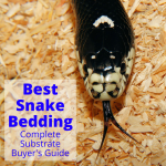 Best snake bedding substrates