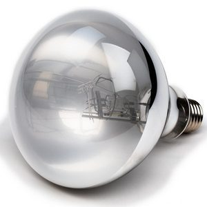 UV lamp snake accessory