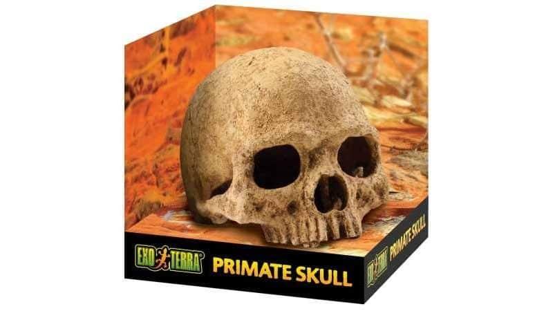 ExoTerra Primate Skull Reptile Cave