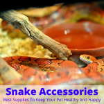 Snake accessories