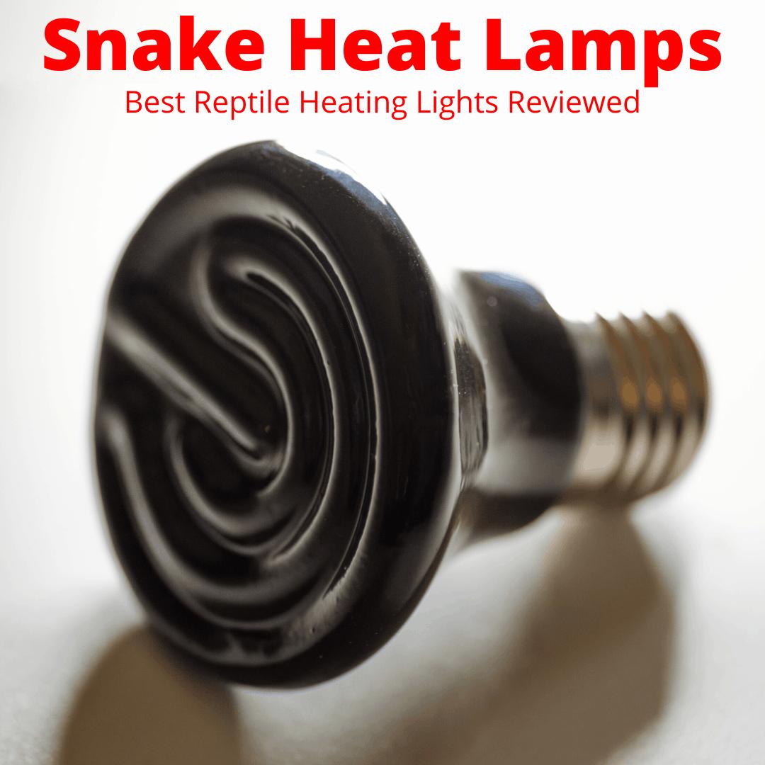 Snake heat lamp