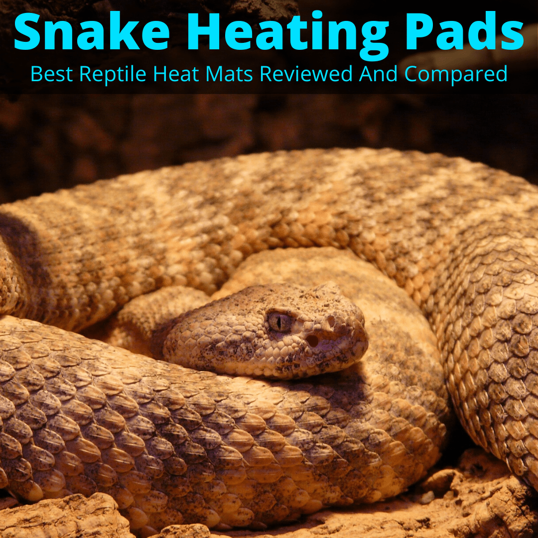 Snake Heating Pads