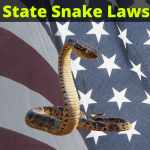 Snake laws in the United States