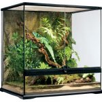 Exo Terra Glass Natural Terrarium Review