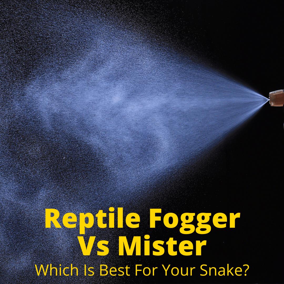 Reptile Fogger Vs Mister