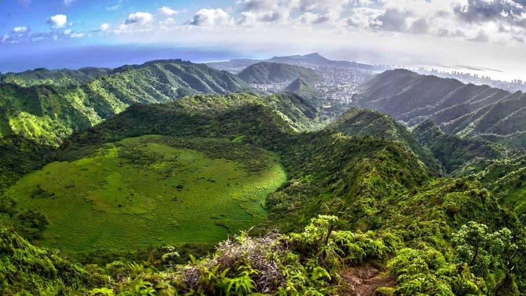 Hawaiian biodiversity