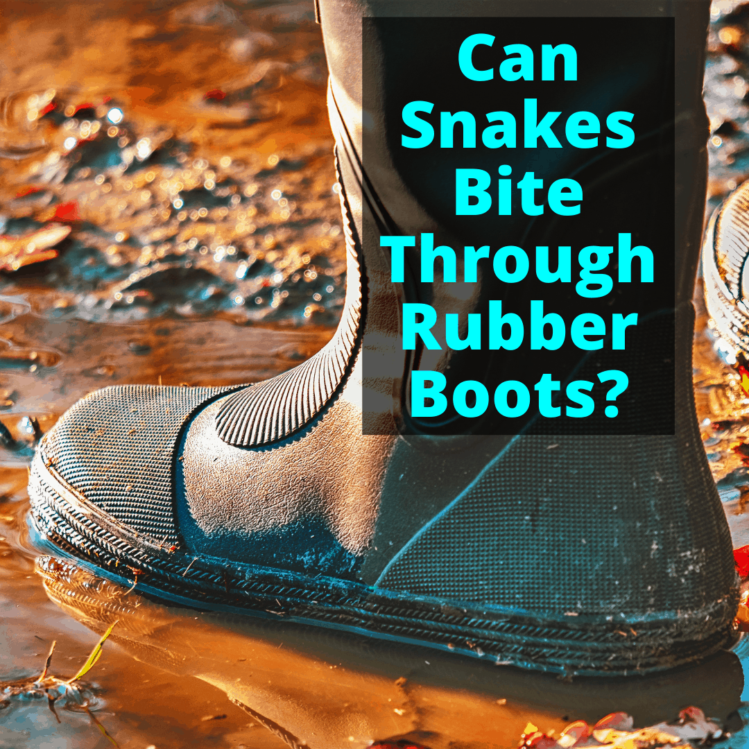 Can Snakes Bite Through Rubber Boots