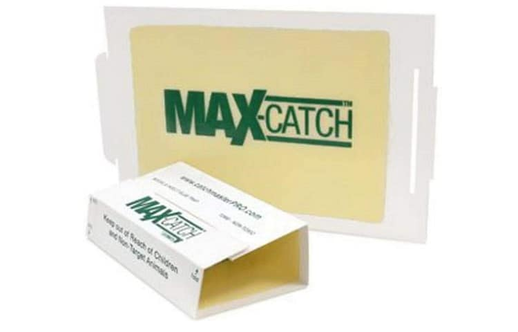 Catchmaster 72MAX Pest Trap Review