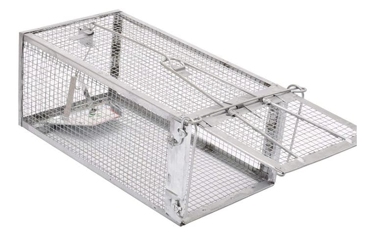 Kensizer Small Animal Humane Live Cage Review