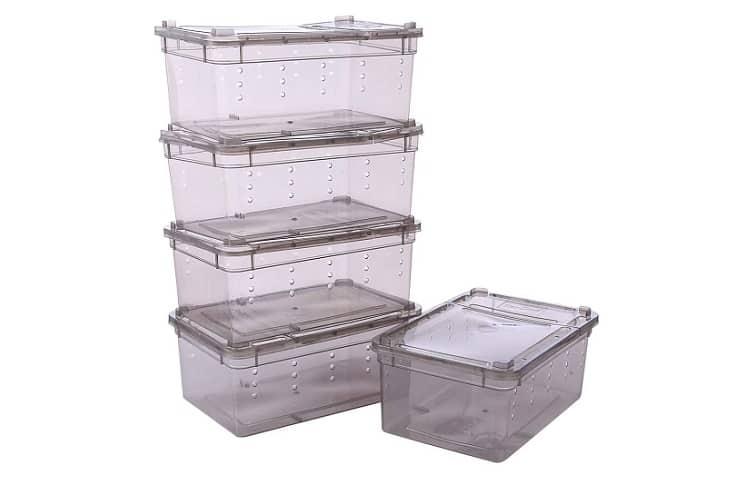 Petforu Reptile Dish Feeding Box Food Container Review