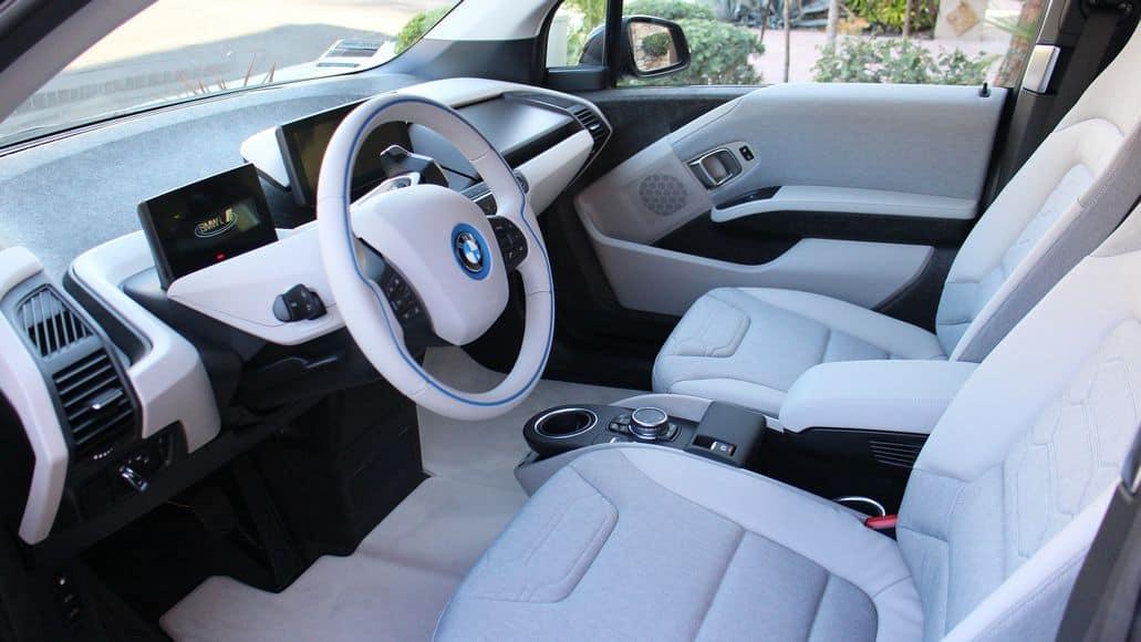 car interior after snake removed